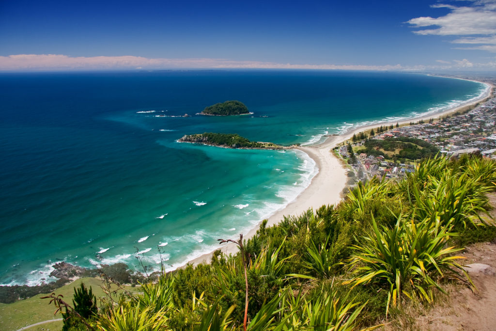 Tauranga beach coastline - guide to New Zealand